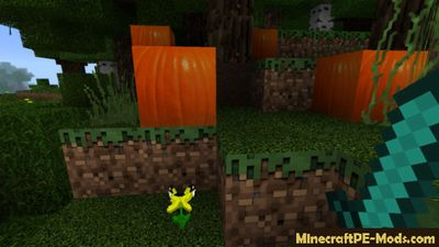 Circle Shaders PE V11 For Minecraft PE 1.2.0, 1.1.5, 1.1.4, 1.1.0