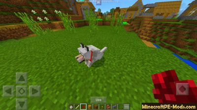 My Wolf Upgrade Addon For Minecraft PE