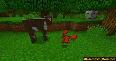 More Animal Drops Minecraft PE Mod 1.2.0, 1.1.5, 1.1.4, 1.1.0