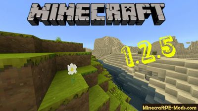 Download Minecraft PE 1.2.5.0 Apk Bedrock
