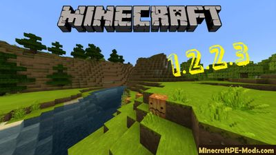 Download Minecraft 1.2.2.3 Full Version Apk, Windows 10, iOS