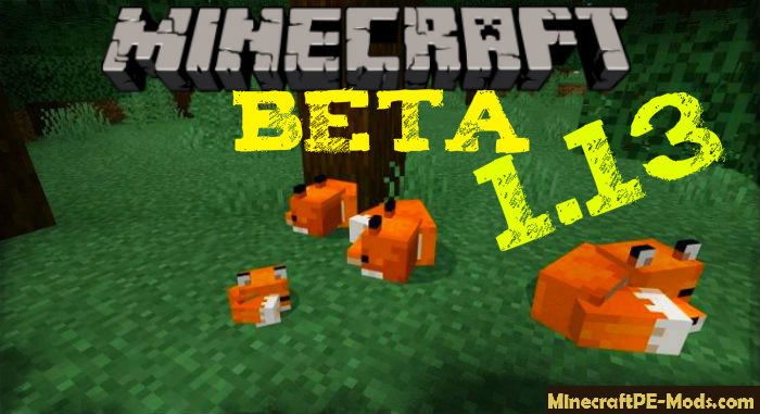 Download Minecraft PE BETA 1 13 0 9, 1 13 0 6, 1 12 0 14 for