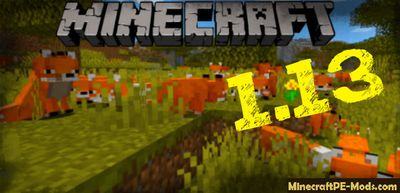 Download Minecraft PE v1.13.0, 1.13.0.1 APK free Village & Pillage