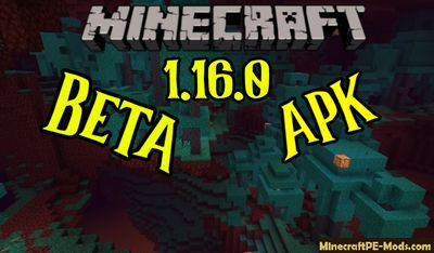 Download Minecraft PE Beta 1.16.0 (MCPE) APK free Version