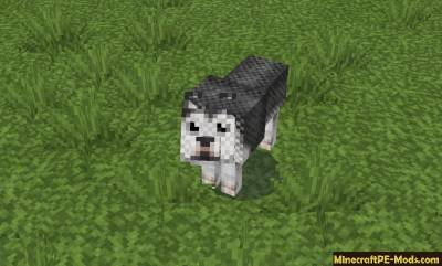 John Smith Legacy Texture Pack For Minecraft PE 1.1.0, 1.0.8, 1.0.0